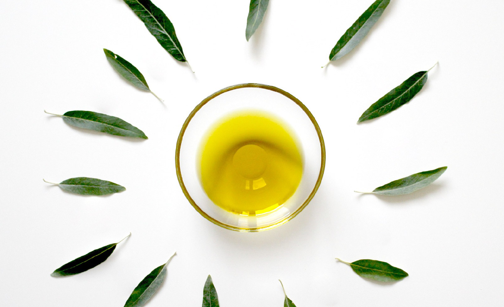 Fondo de aceite de oliva de Aceites Echinac